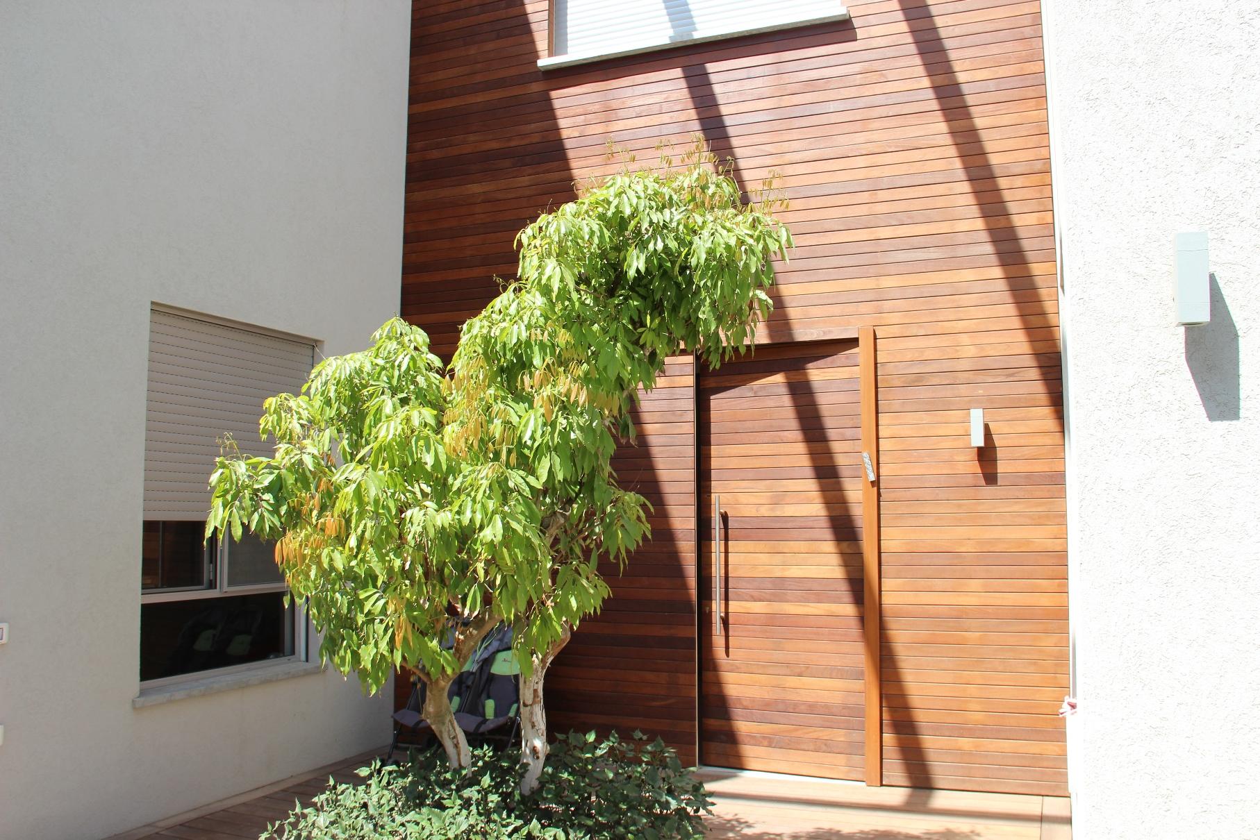 חיפוי דלת בעץ איפאה